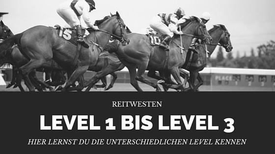 www.sicherheitsweste-reiten.de